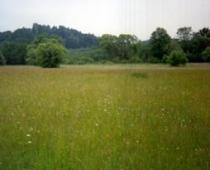 Naturschutz_1
